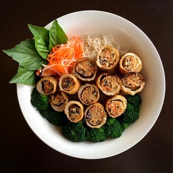 Vietnamese Spring Rolls-Mekong Restaurant Menu